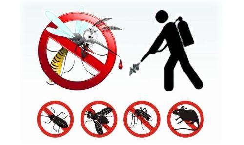 böcek ilaçlama, böcek ilaçlama fiyatları, beyoğlu böcek illaçlama