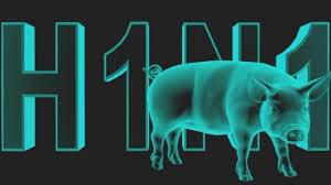 domuz gribi, grip , domuz gribi tedavisi3